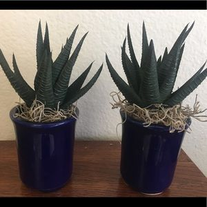 Set of 2 Faux Aloe In Vintage Pottery Handcrafted